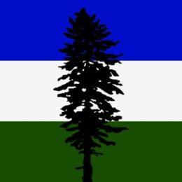 5x3ft Polyester Cascadia Bioregional Flag
